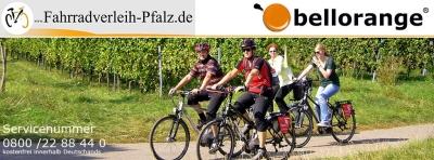 Fahrradverleih Pfalz in Palmbach