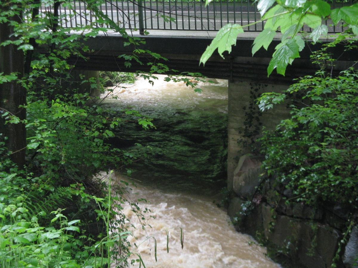 Wetterbach Richtung Wolfartsweier L623